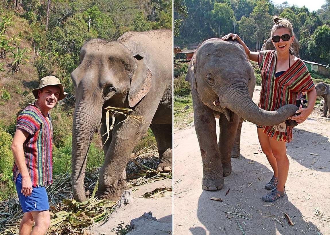 Rezerwat słoni w Tajlandii - wolontariat ze słoniami