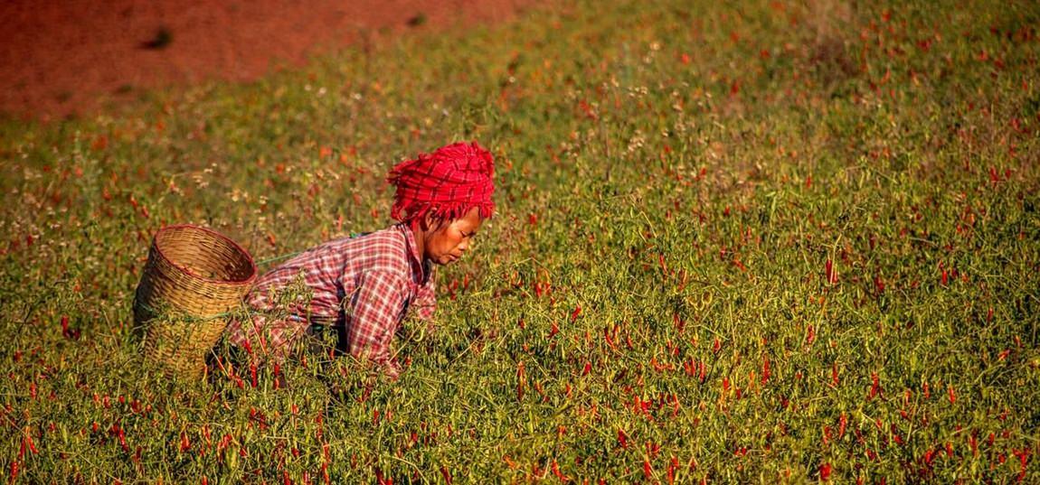 co zobaczyć w Birmie