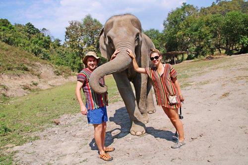 słonie w Tajlandii ośrodek