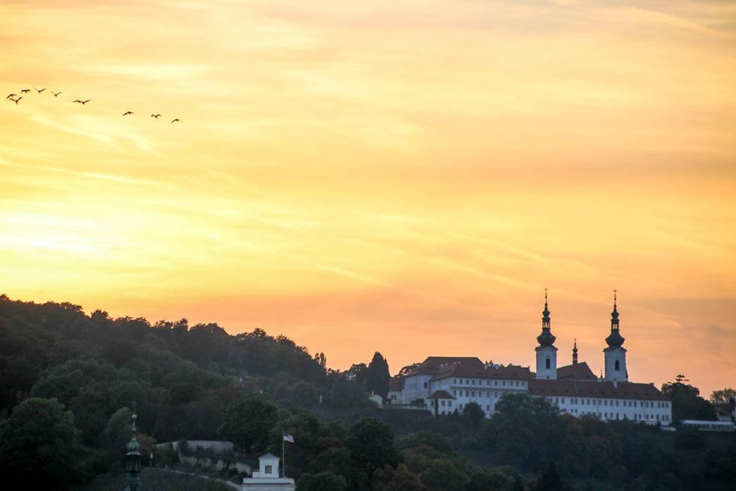 punkty widokowe w Pradze Staromiejska Wieża Mostowa