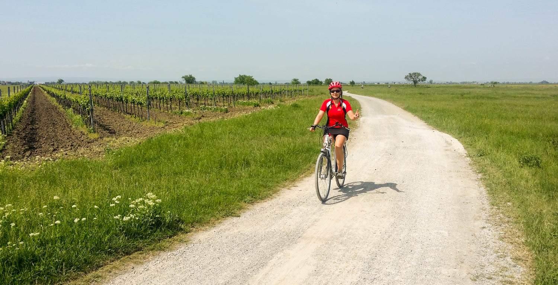 Najciekawsze trasy rowerowe w Austrii