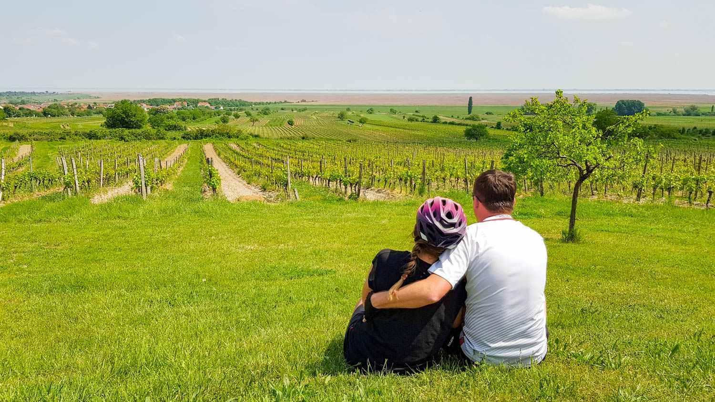 Austria rowerem winnice