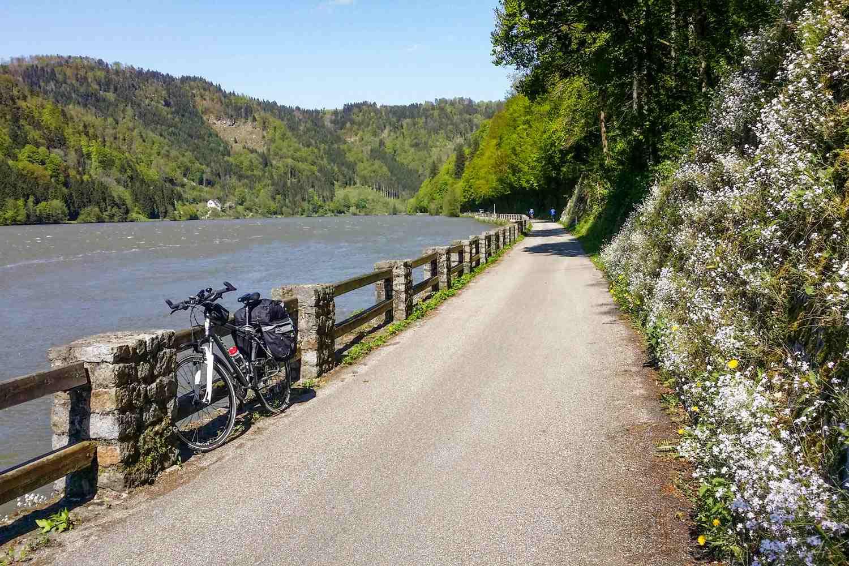 Dunaj Austria ścieżki rowerowe